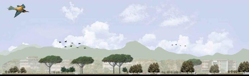 sezione-paesaggistica